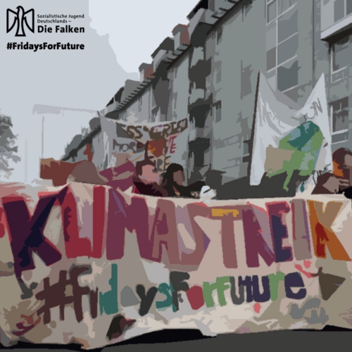 Solidarität mit Fridays for Future